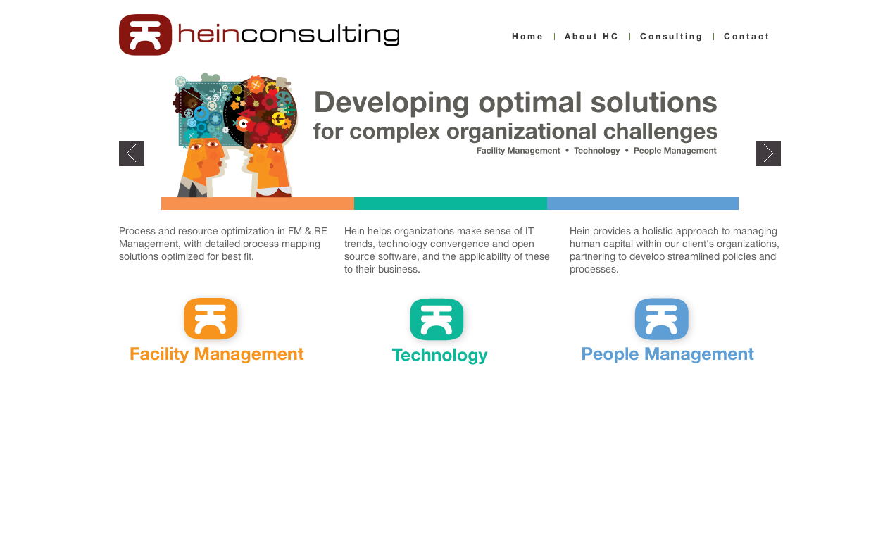 hein-consulting.com